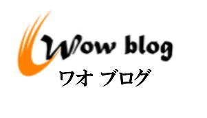 テニスの技術や練習方法ブログ